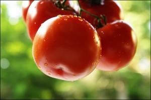 4 cách trị sẹo lõm bằng tự nhiên tại nhà