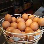 Bật mí xóa sẹo thâm bằng lòng trắng trứng gà