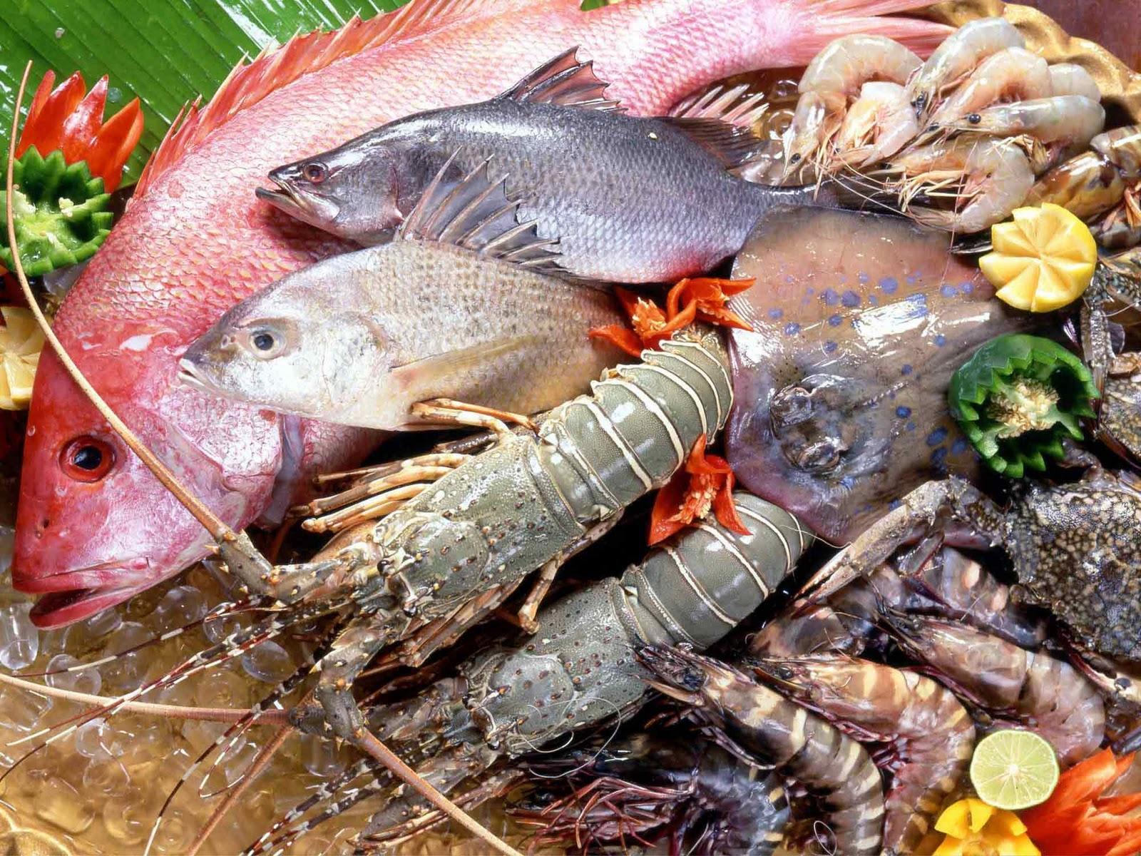 Không nên ăn hải sản để tránh sẹo lồi